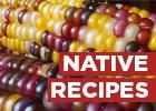 Native & American Indian News, Culture, Music, Art and More - Indian Country Today Media Network.com