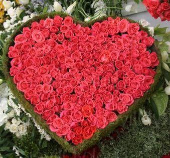100 Red roses heart shape arrangement