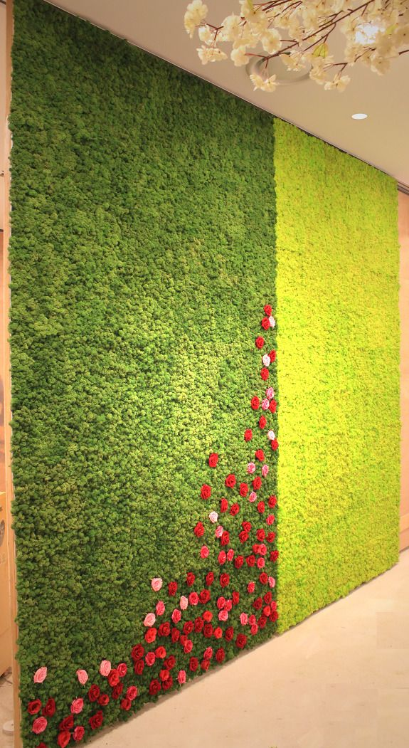 7th Project : A wedding Hall Scandia Moss Wall Design Teraria installed Scandia Moss, the eco-wall design, in a wedding hall. On this wall, the color of Moss is Spring Green, its product nubmer [10555]. As the name shows, the atmosphere of Spring Green color reminds me of Spring! You can check the details of Scandia Moss. Can you feel its soft texture? Another wall design used some reddish r..