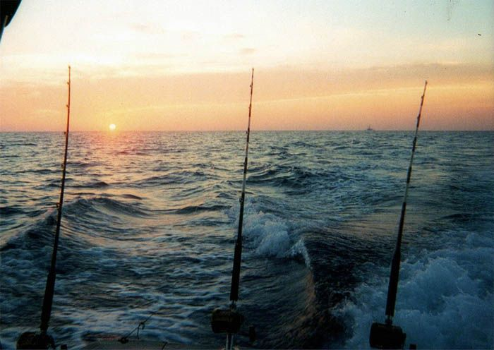 17 best images about deep sea fishing on pinterest deep for Deep sea fishing tybee island