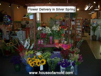 25 best all usa states flowers florist images on pinterest flower delivery in silver spring address 4109 annapolis rd maryland mightylinksfo