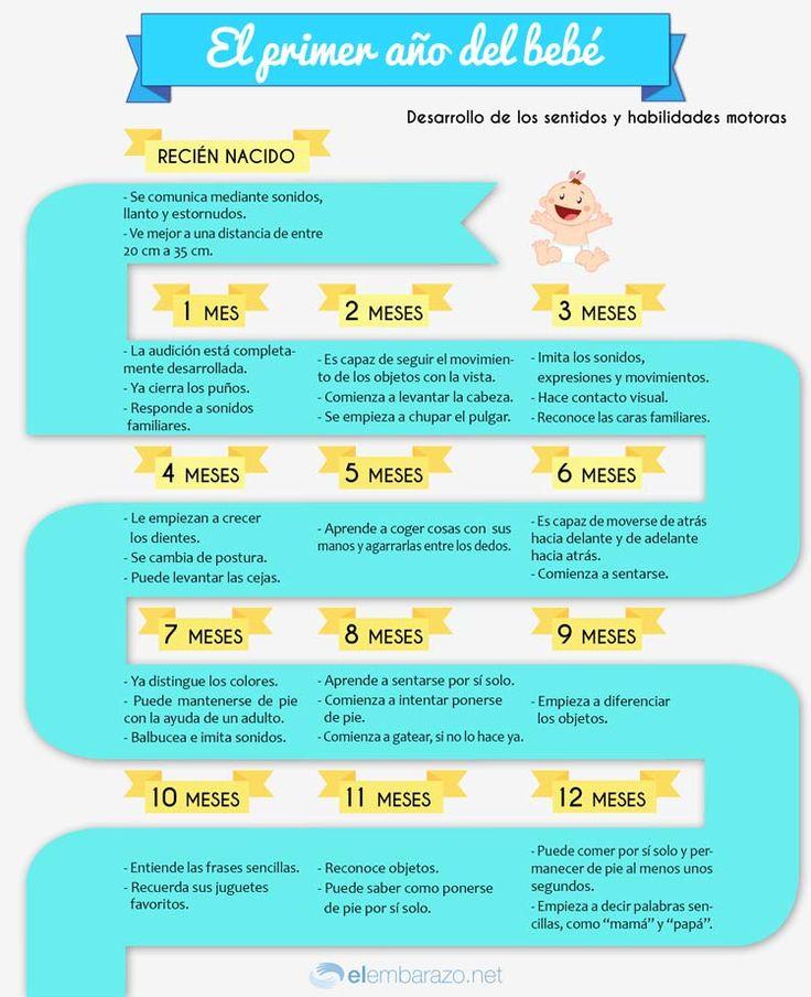 El primer año del bebé siempre es especial. Descubre la evolución del bebé mes a mes con esta infografía, el desarrollo del habla y los movimientos, etc.