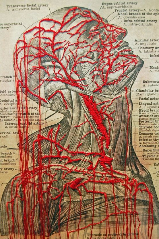 Lynn Skordal - Stitched medical diagram