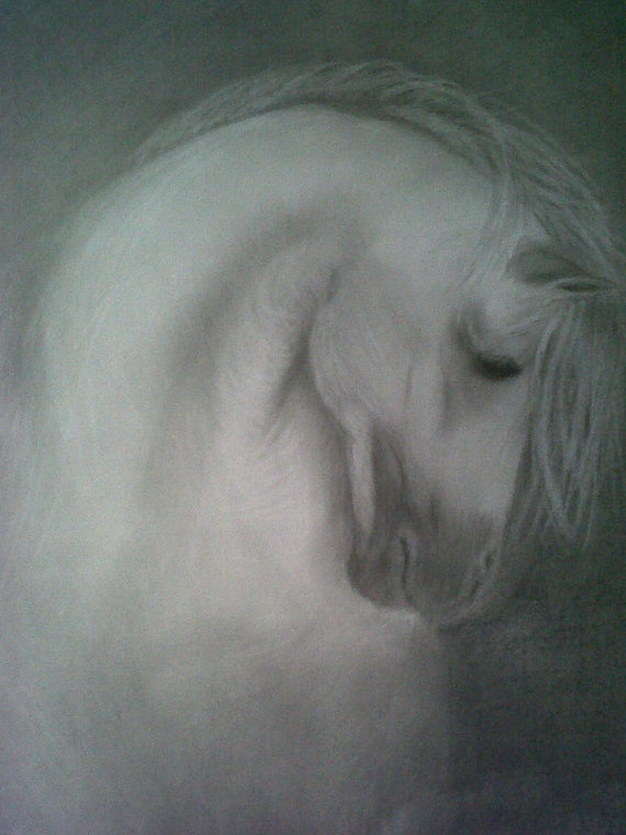 Quiet Stallion by PoniesInPencil on Etsy, $500.00White Horses