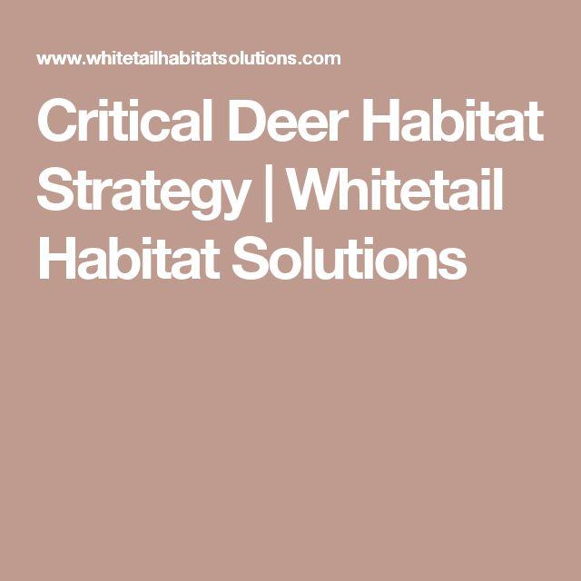 Critical Deer Habitat Strategy | Whitetail Habitat Solutions