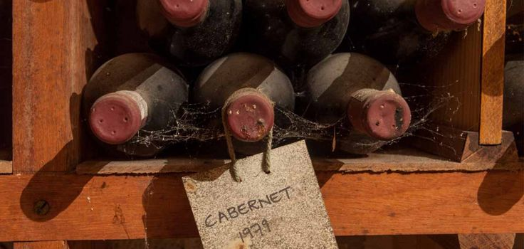Cabernet Tasting at Rust en Vrede (chosen by President Nelson Mandela to be served at the Nobel Peace Prize Dinner, first red wine listed in the Top 100 Wines of the World)