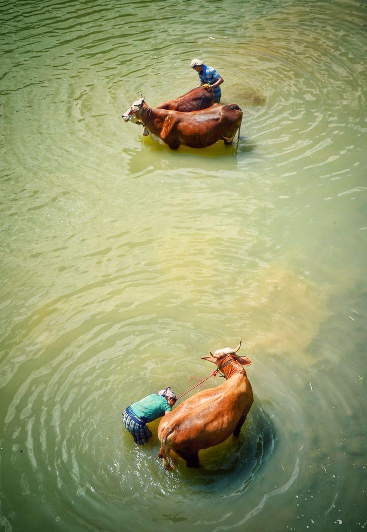 Bathing in the Oya river Gunungkidul