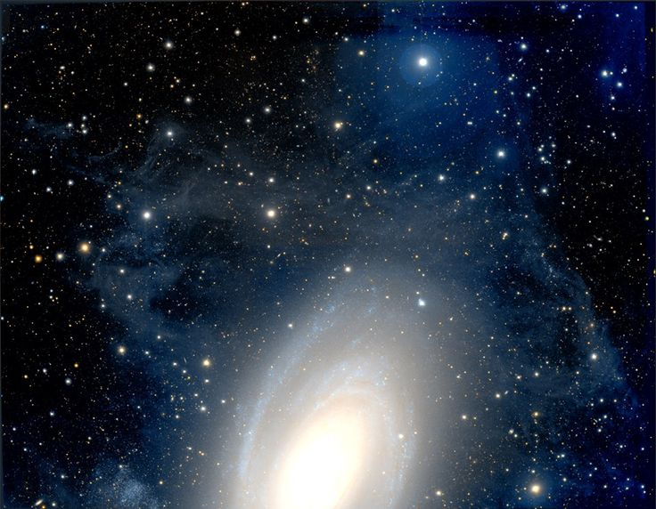 M81's Halo