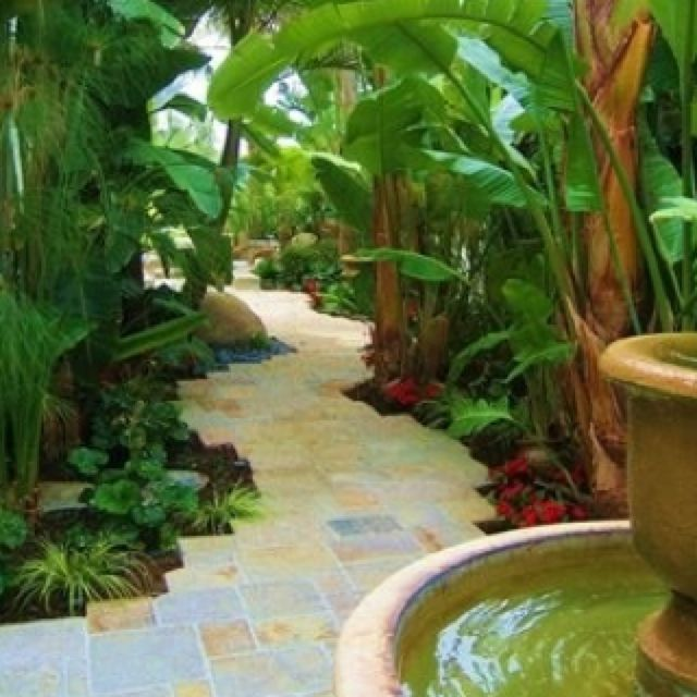 Tropical Garden with pavement path