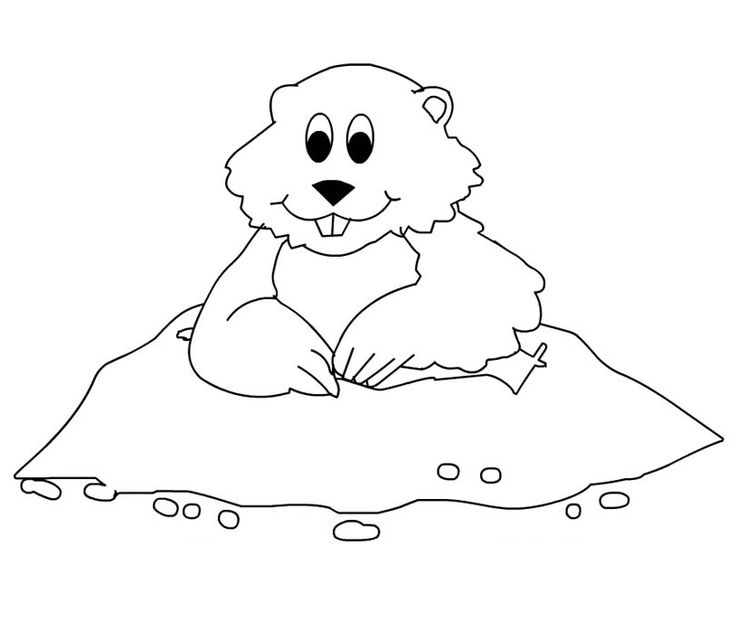 cute animals for groundhog day coloring pages for kids printable groundhog day coloring pages for kids - Groundhog Coloring Pages Print