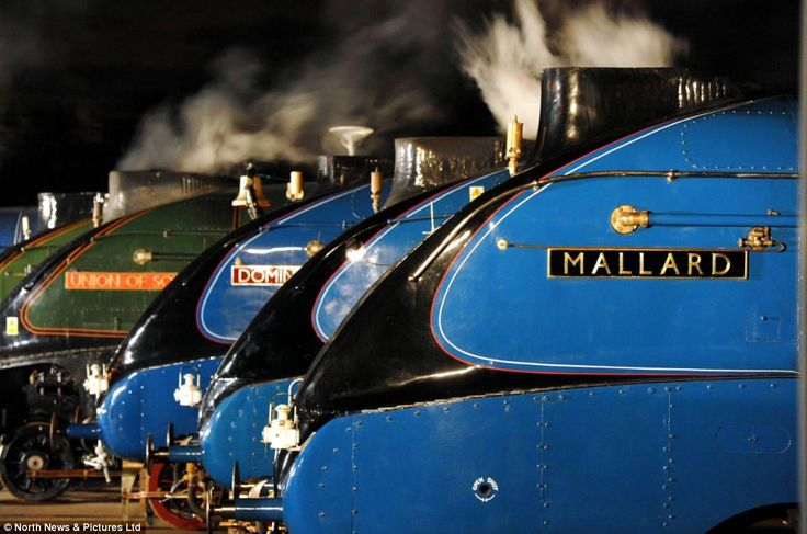 Reunited one last time - six of Britain's greatest steam engines including world record holder Mallard and its five surviving sister locomotives