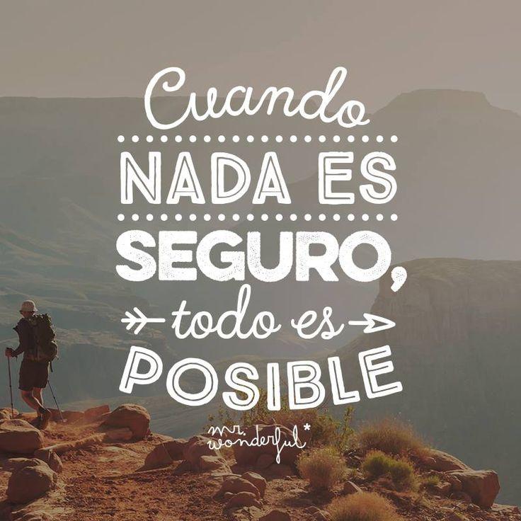 Cuando nada es seguro, todo es posible Mr Wonderful