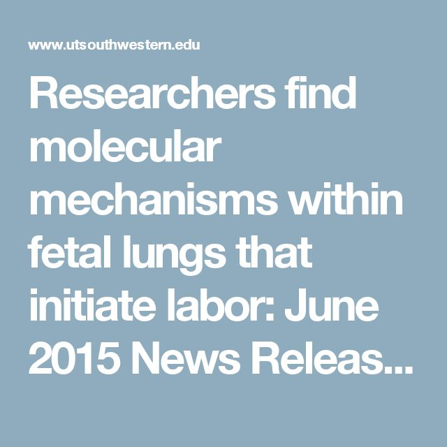 Researchers find molecular mechanisms within fetal lungs that initiate labor: June 2015 News Releases - UT Southwestern, Dallas, Texas