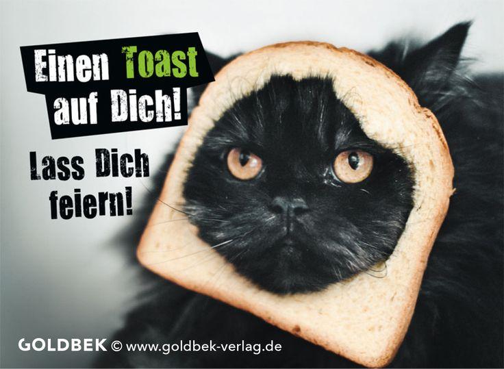 Postkarten - Geburtstag Humor. Lustiges Katzen - Motiv :) Einen Toast auf dich!