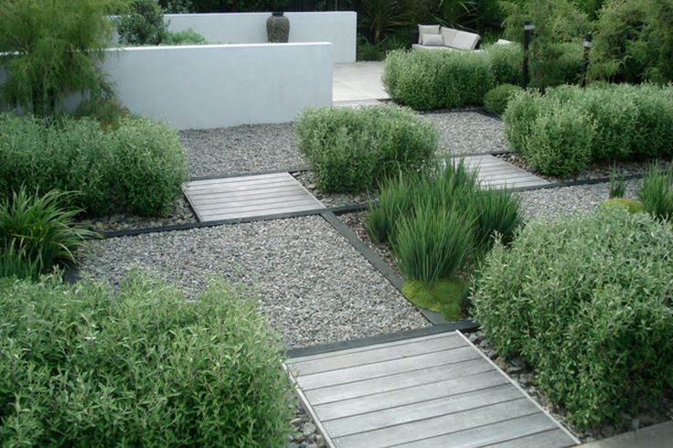 New Zealand native coronial hedge rows create a series of of smaller courtyards in a coastal garden near Wellington New Zealand.