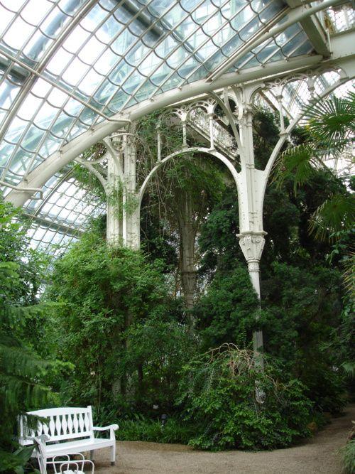 Trees + Victorian greenhouses = :)  [kew]