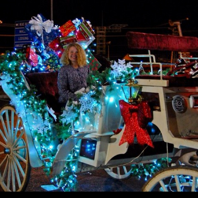 Christmas Carriage Rides At Walden's Landing In Pigeon