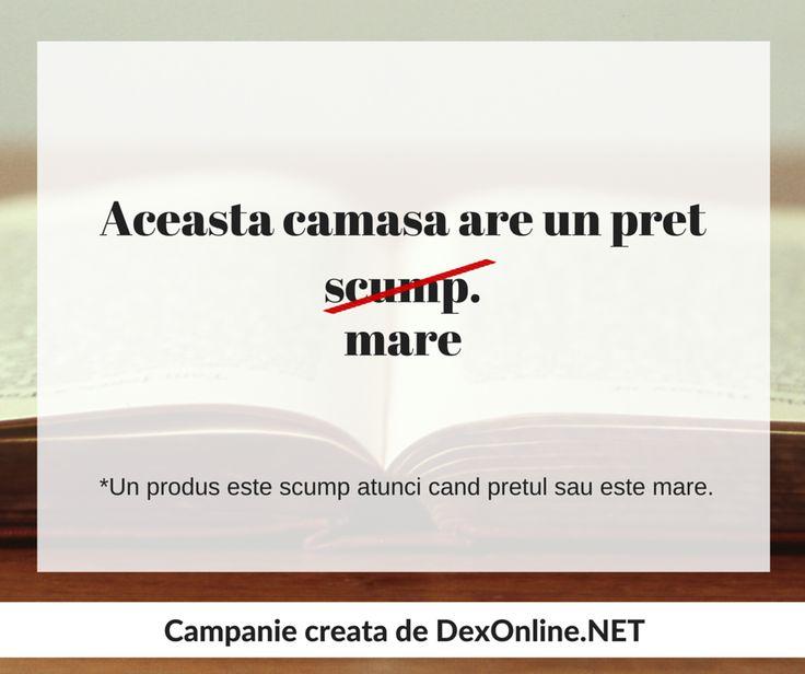 Dexonline promoveaza limba romana vorbita corect