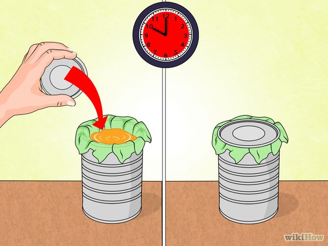 Make Natural Outdoor Fly Repellent with Essential Oils Step 4 Version 3.jpg