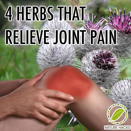 4 Herbs That Relieve Joint Pain
