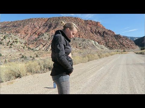 (91) 20 minute Strength Cardio Prenatal Workout in Cedar City  (27 weeks Pregnant) - YouTube