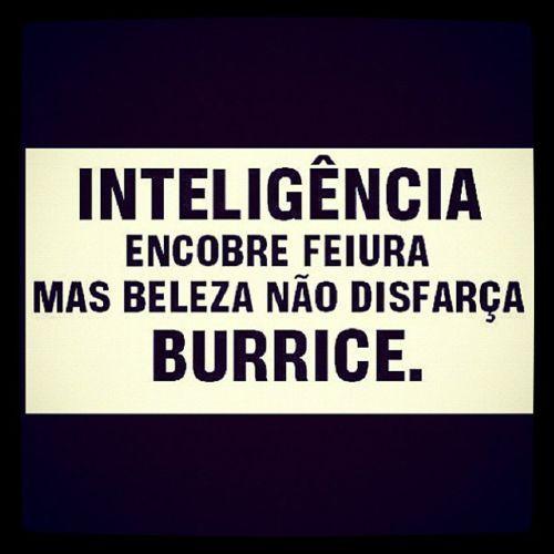 Inteligência encobre