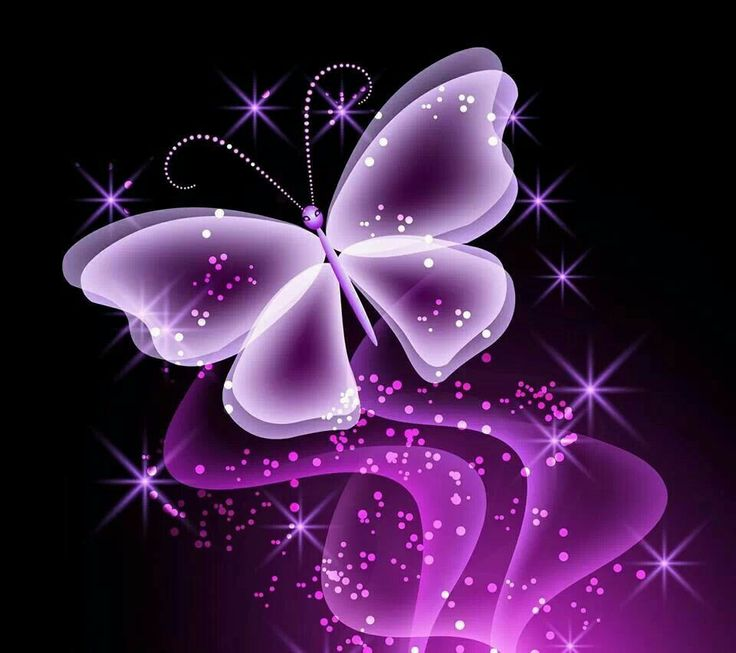 Pink Butterfly Wallpaper: COLOR: Passionate Purples