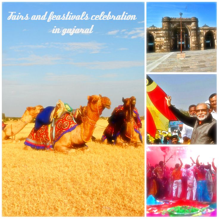 There are lots of traditional customs and attractions in Gujarat, #raan #utsav #kite #festival #holi celebration are the main attraction of Gujarat, celebrate the upcoming festivals with #gujaratfourwheeldrive to #explore the #Gujarat #tourism & #travel of #Incredible #India. For about #gujarat #tourism #tour #packages visit here: goo.gl/NdJ4mj Or call us : +91 9829766640