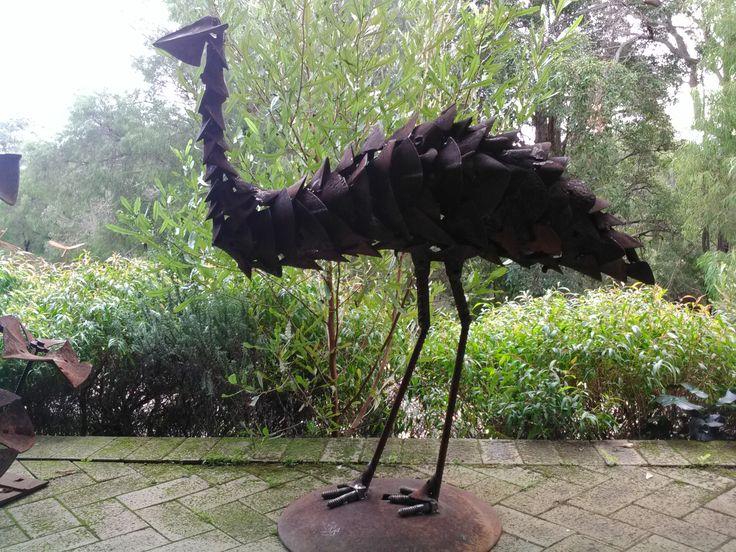Boranup Emu by Justin Webb
