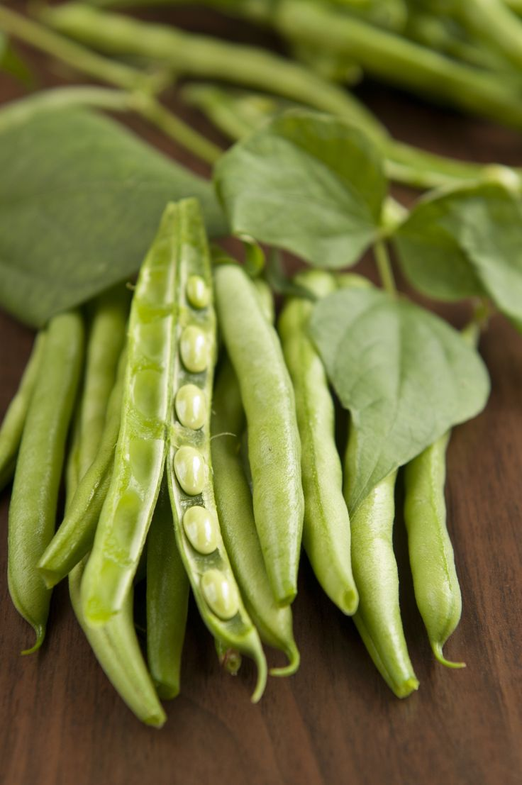 When a Southerner Tells You How to Cook Green Beans, Shut Up and Listen — Vegetable State of Mind