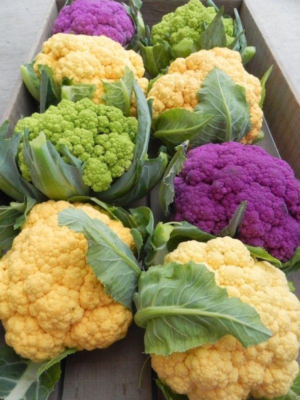 Orange Purple and Green Cauliflower from How to Grow Rainbow Vegetables #ebay #spon #garden