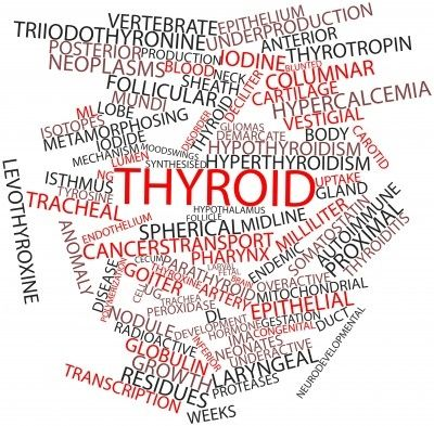 We often hear about the connection between thyroid and hair loss, but many of the women we talk to don't know that the thyroid plays a role in almost every system in the body. This is why low thyro...