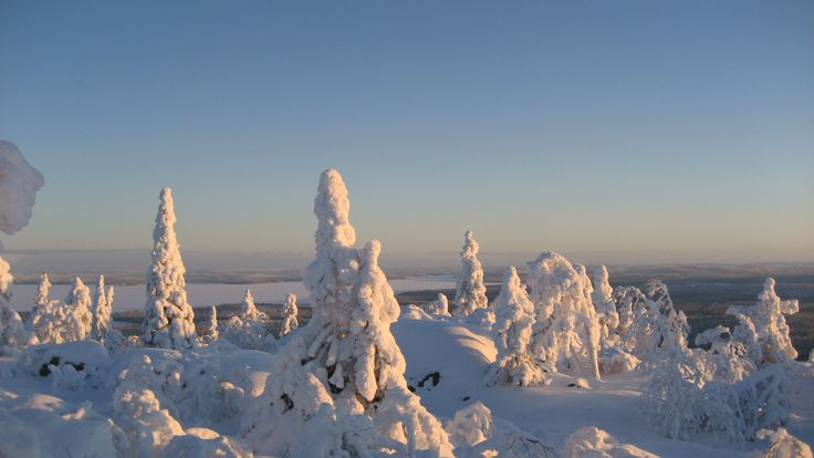 The fjell of Pyhitys in the North of Taivalkoski, Lapland, Finland