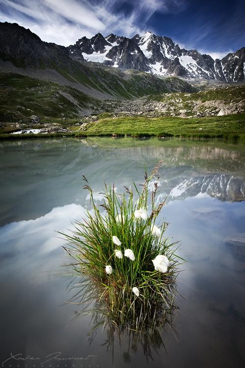 Les Parc Naturel National des Ecrins, dans les Alpes françaises #paca #tourismepaca