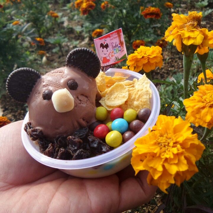 Chocolate Cute Dessert