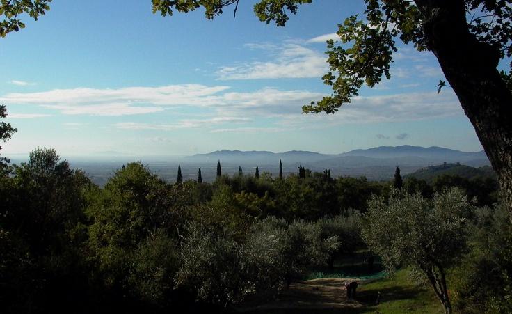 #maremma, #tuscany.