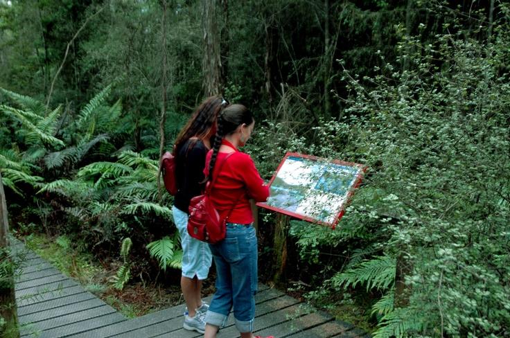 the walk through the springs area