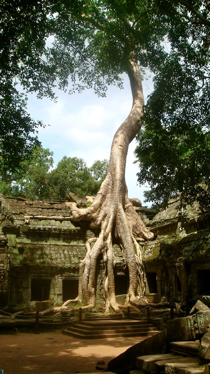 Different feelings angkor wat cambodia fountain religious architecture temples beautiful life building ruins exotic