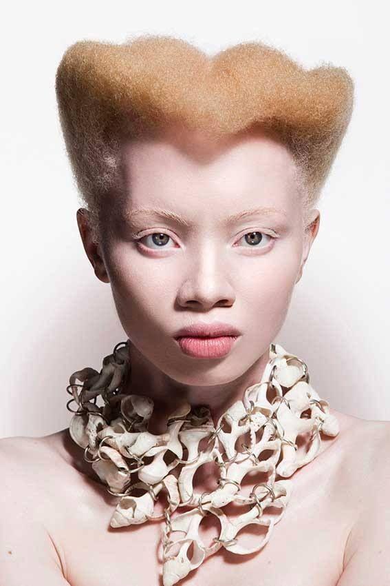 Albino model                                                                                                                                                                                 Plus