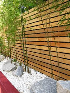 Bamboo - horizontal fence