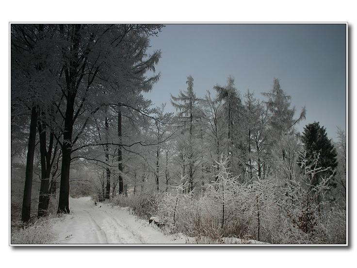 Slovakia, Zima - Igor Strhárský