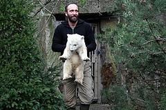 I will carry you alwaysPolar Bears, Adorable Bears