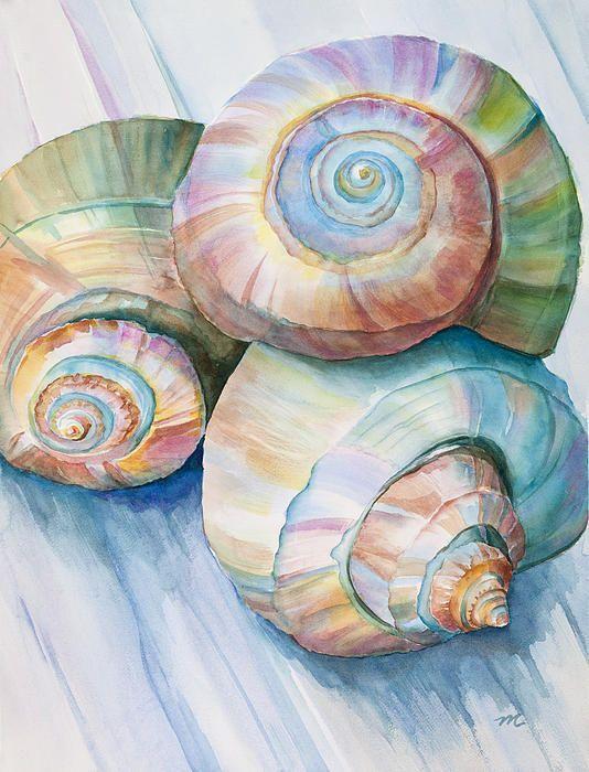 yoanythings: Seashell dell'acquerello in grandi toni spiaggia