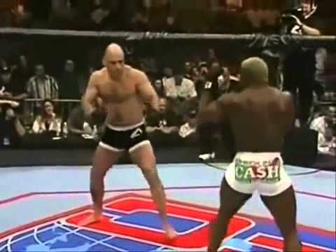 Bas Rutten Knockouts and Highlights