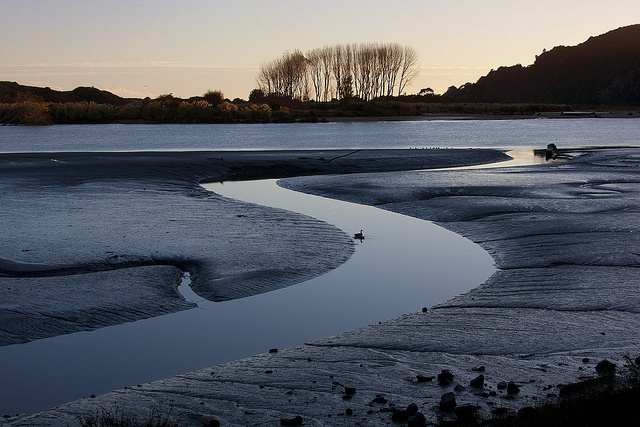 Whakatane River in the early morning. Credit. Mandy Hague
