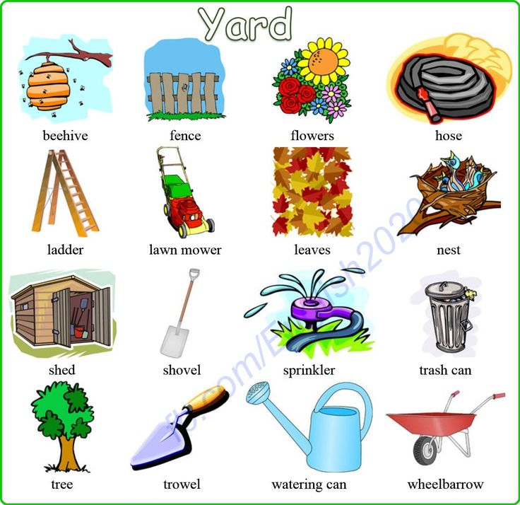 Vocabulary: Yard