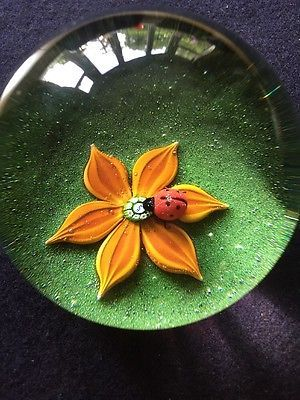 Caithness Glass Paperweight By William Manson Colin Terris Ladybird On Flower