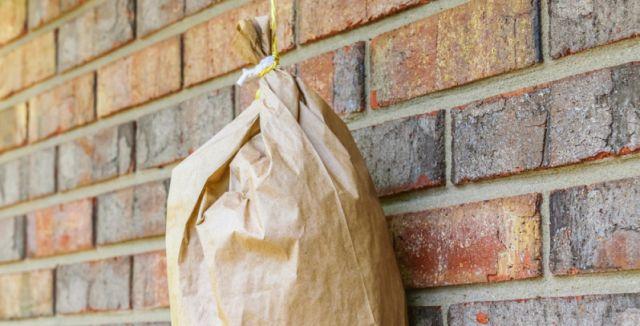Nafouknutý papírový sáček dokáže odehnat vosy do vzdálenosti pěti metrů.