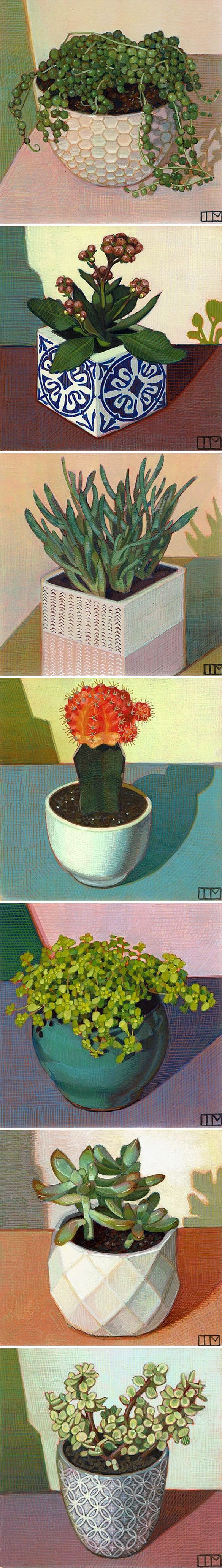 egg tempera paintings by teagan mclarnan #plants #succulents #cactus #art