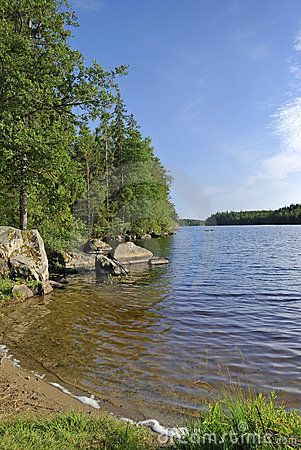 Summer Swedish lake landscape
